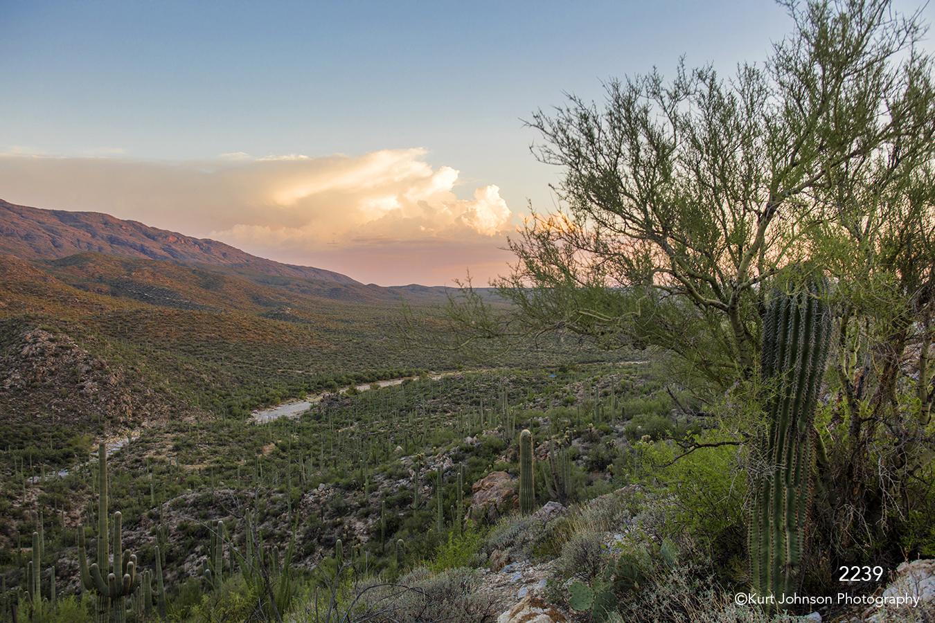landscape desert cactus mountains clouds