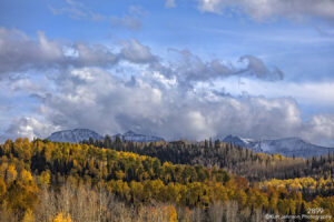 landscape trees forest fall mountains Colorado clouds