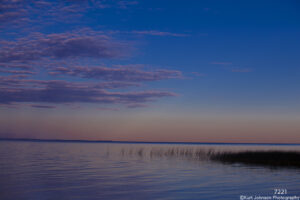 grasses water waterscape purple sunset