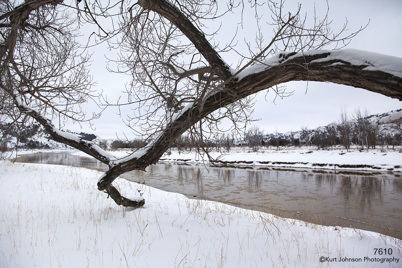 Landscape waterscape river snow tree