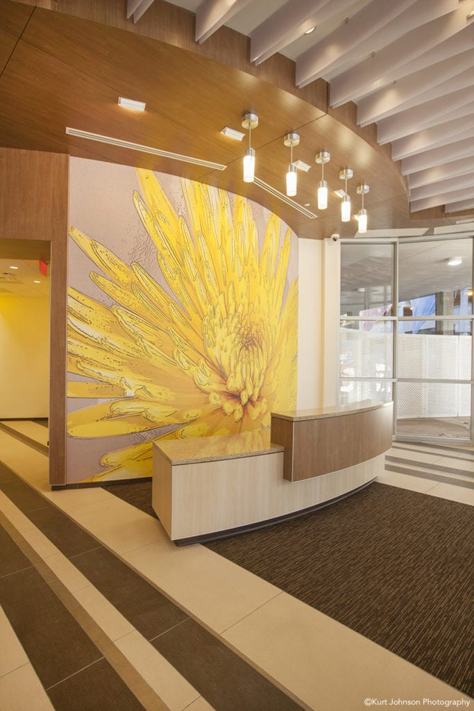 Install-wallcovering-art-The Mother Baby Center at Abbott Northwestern and Children's Minnesota-MN-HDR Minnesota