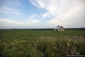 landscape rural fields crops barn midwest clouds grasses green
