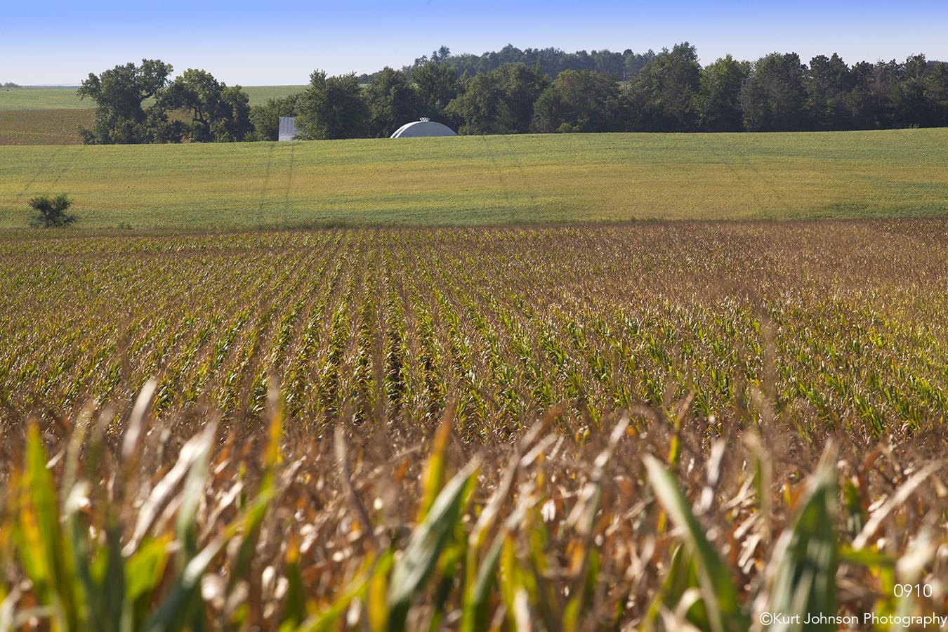 landscape rural crops fields barn corn midwest