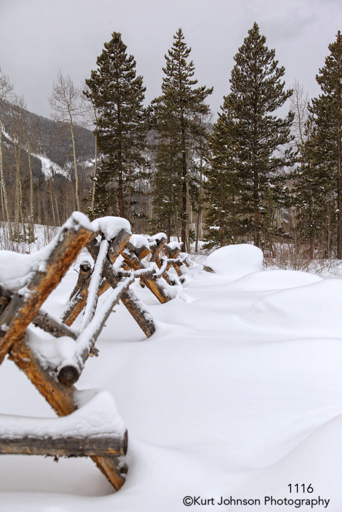 landscape snow trees fence colorado