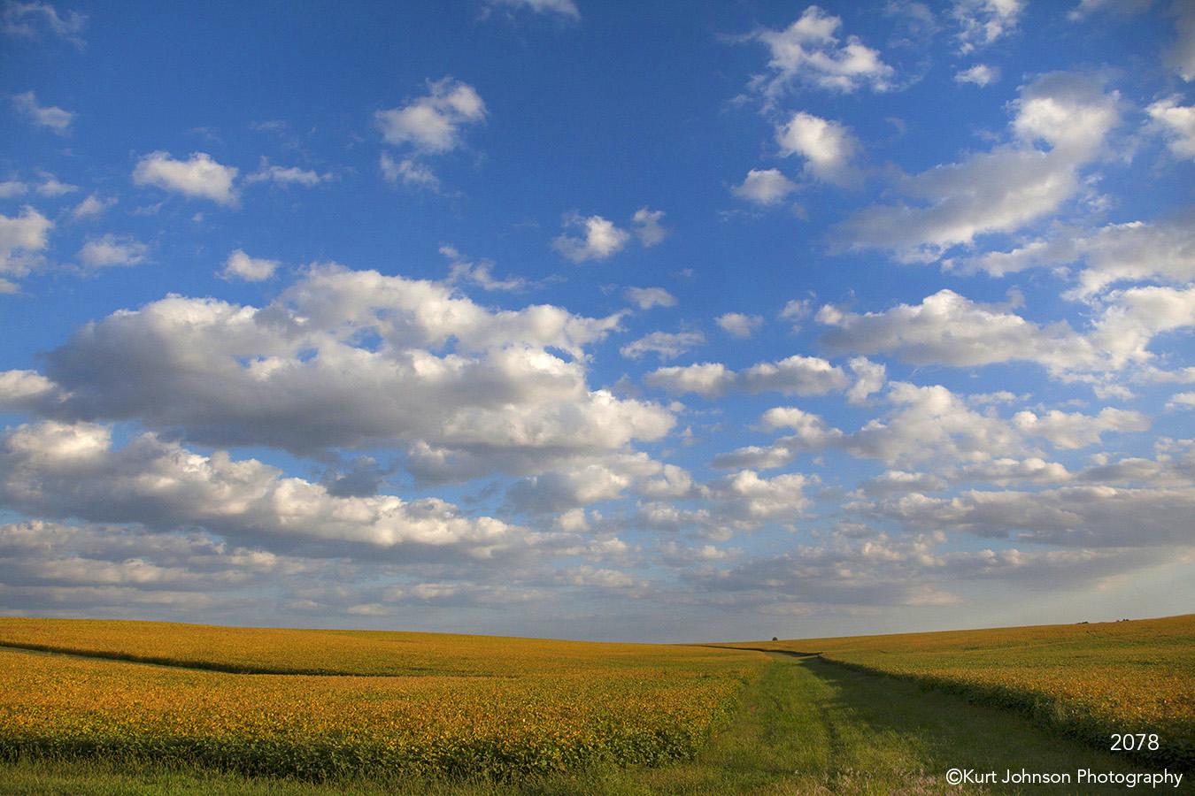 landscape fields crops clouds midwest
