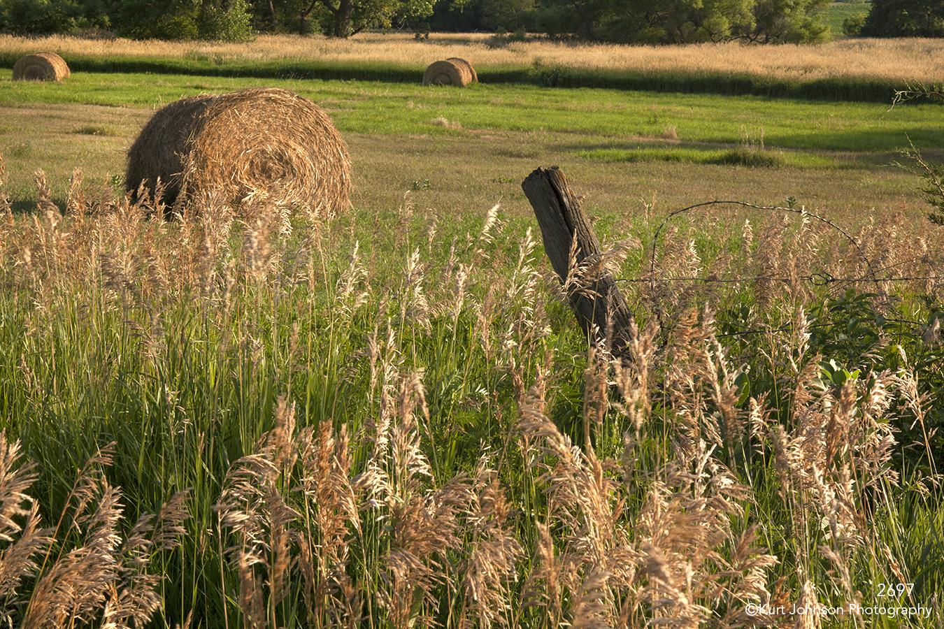 landscape grasses fences trees hay midwest
