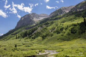 landscape mountains trees forest grasses colorado stream