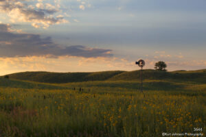 landscape flowers grasses field midwest clouds sunset windmill