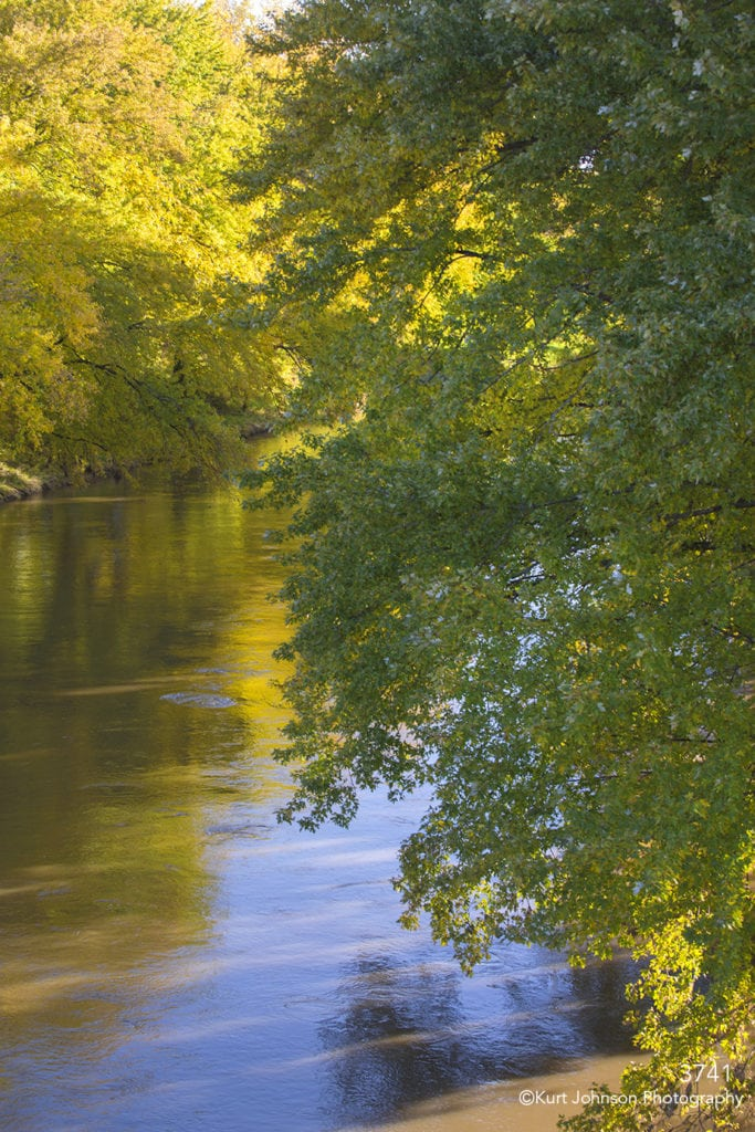 waterscape river water trees green leaves yellow