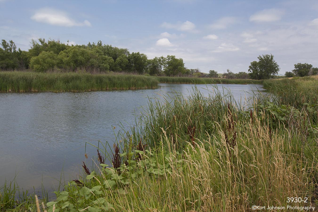 waterscape landscape grasses water clouds river