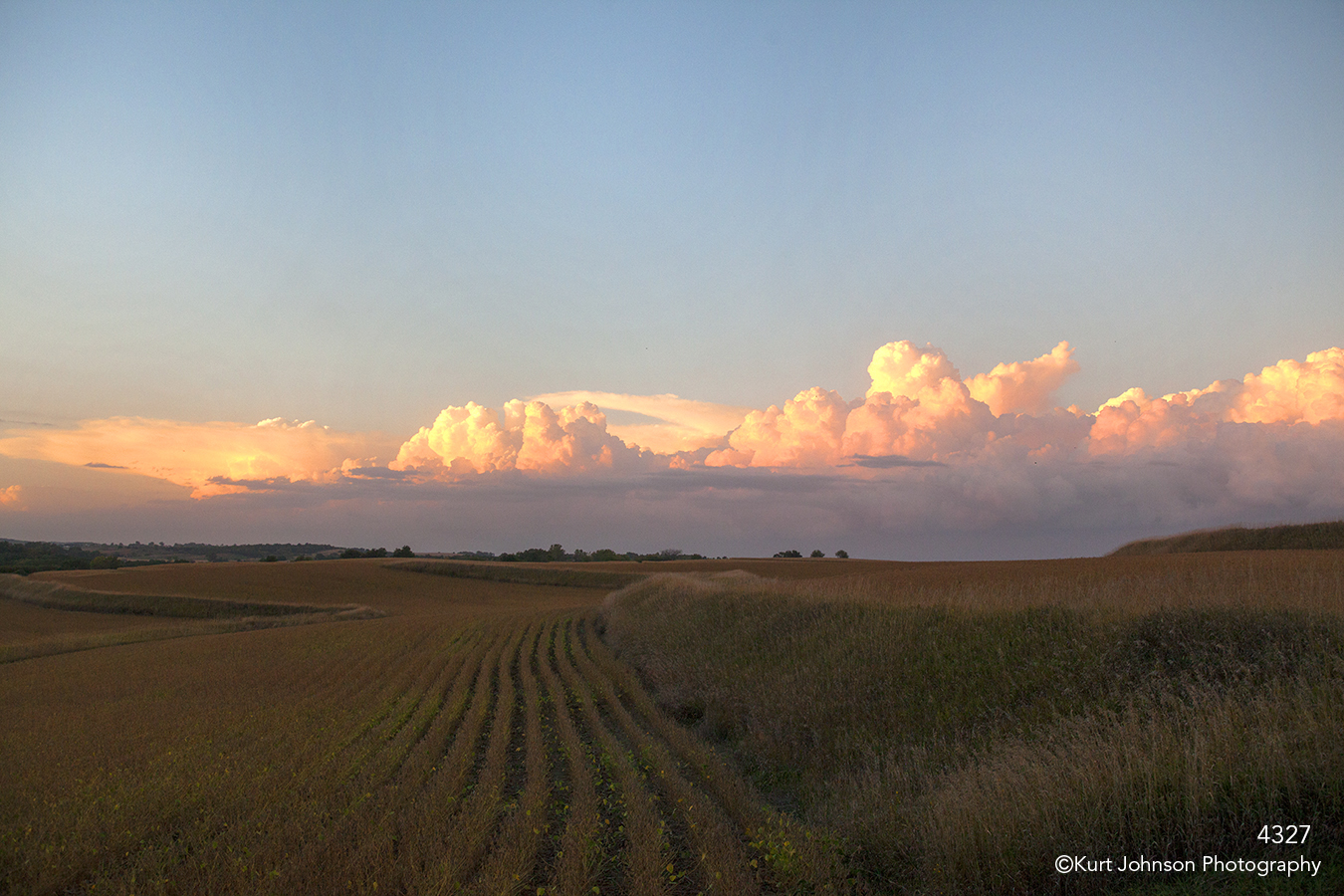 landscape grasses clouds sunset midwest fields crops