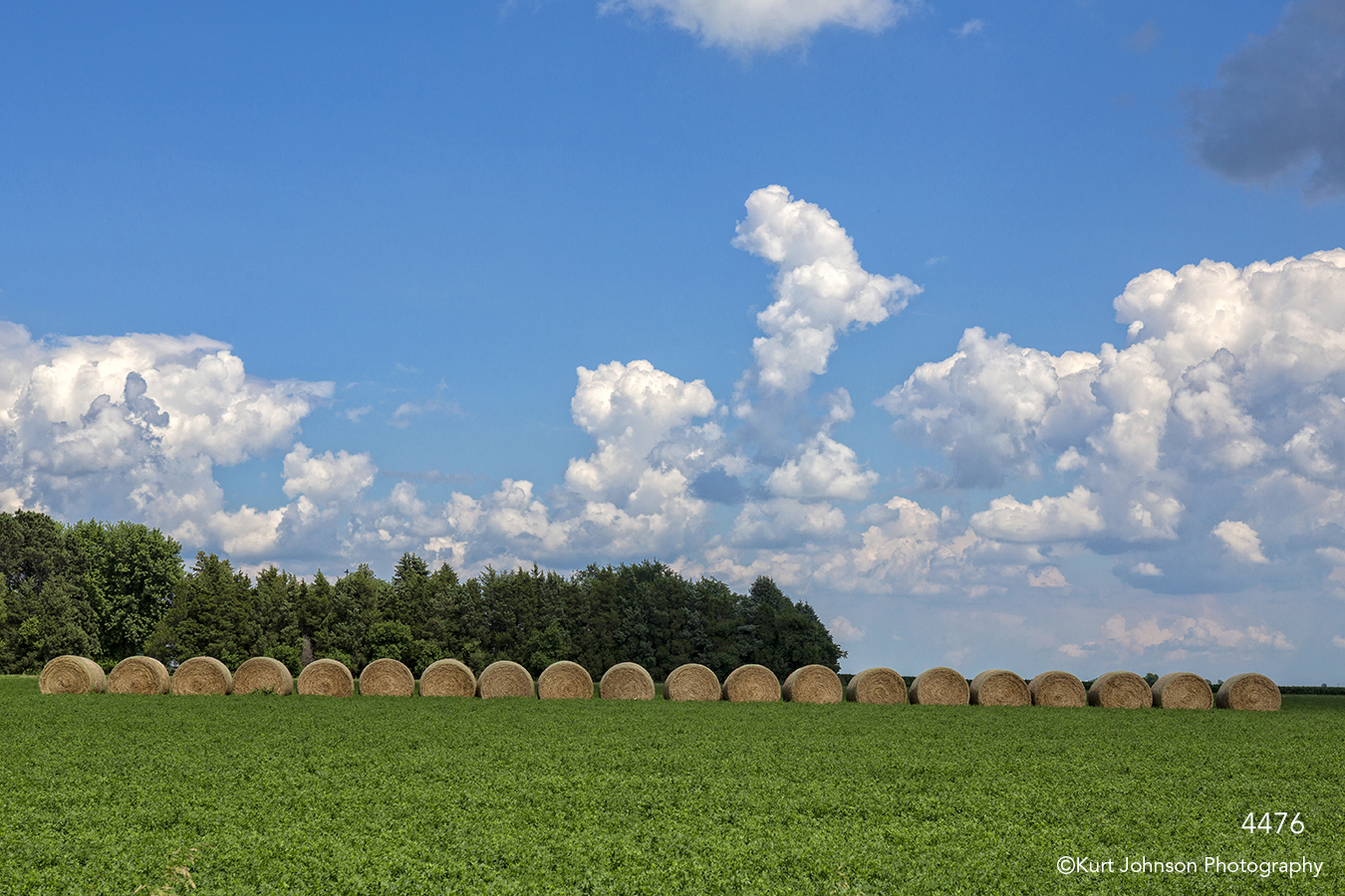 landscape clouds midwest hay rural pine trees
