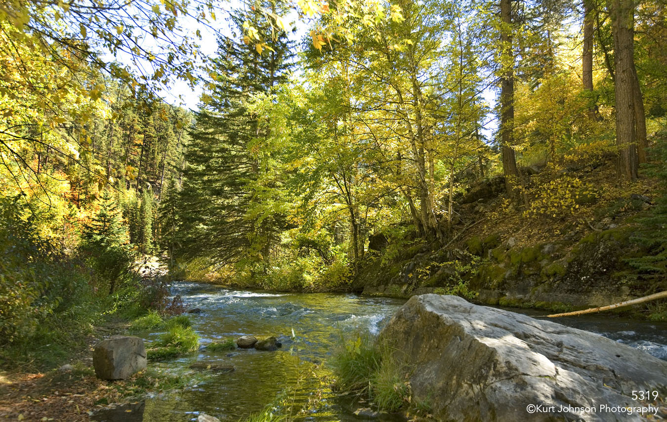 landscape waterscape stream rocks forest fall color