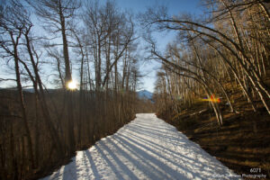 landscape winter snow trail bare trees light mountains colorado