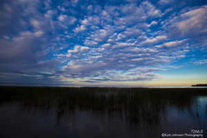 waterscape grasses clouds blue light water