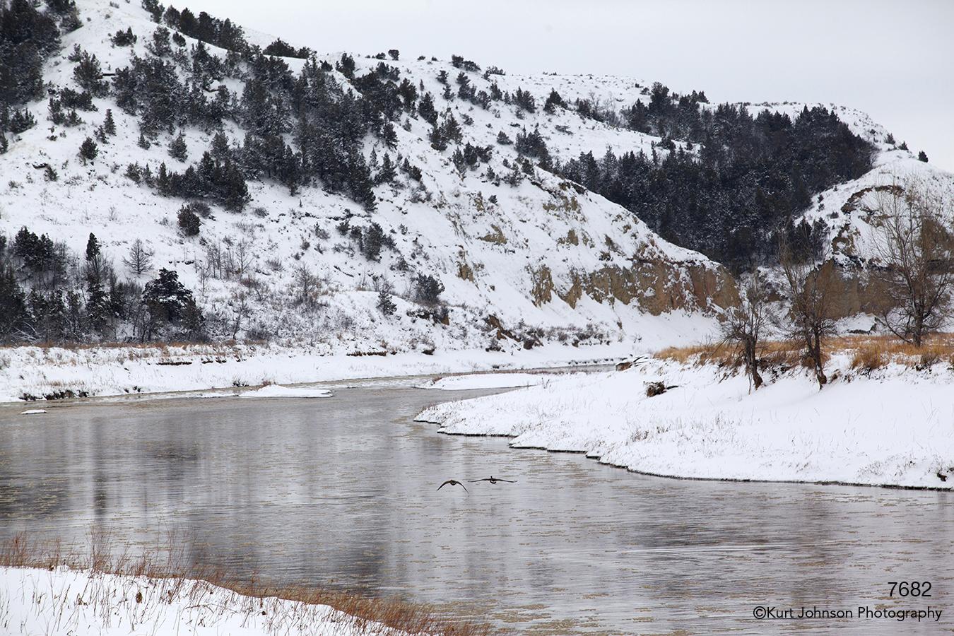 landscape waterscape snow winter water wildlife geese shore river mountains dakota