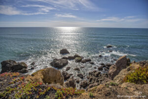 waterscape landscape grasses blue ocean rocks california light