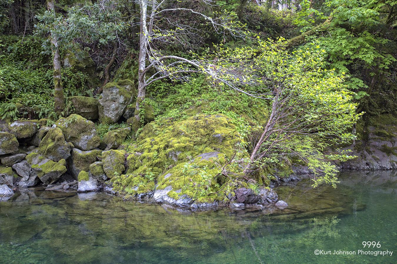 waterscape landscape green grasses trees rocks water river california