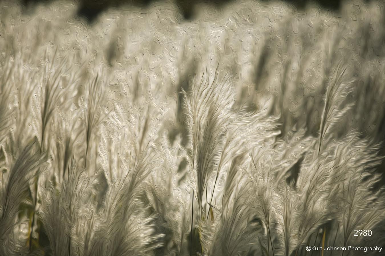 interpretations interpretation filter oil paint grasses white texture