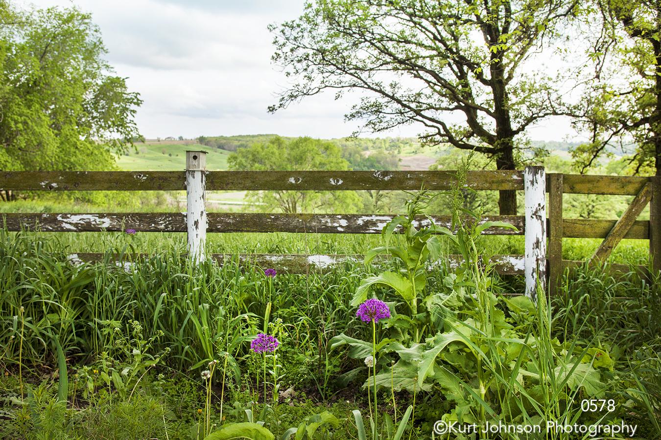 landscape grasses green fence rural trees