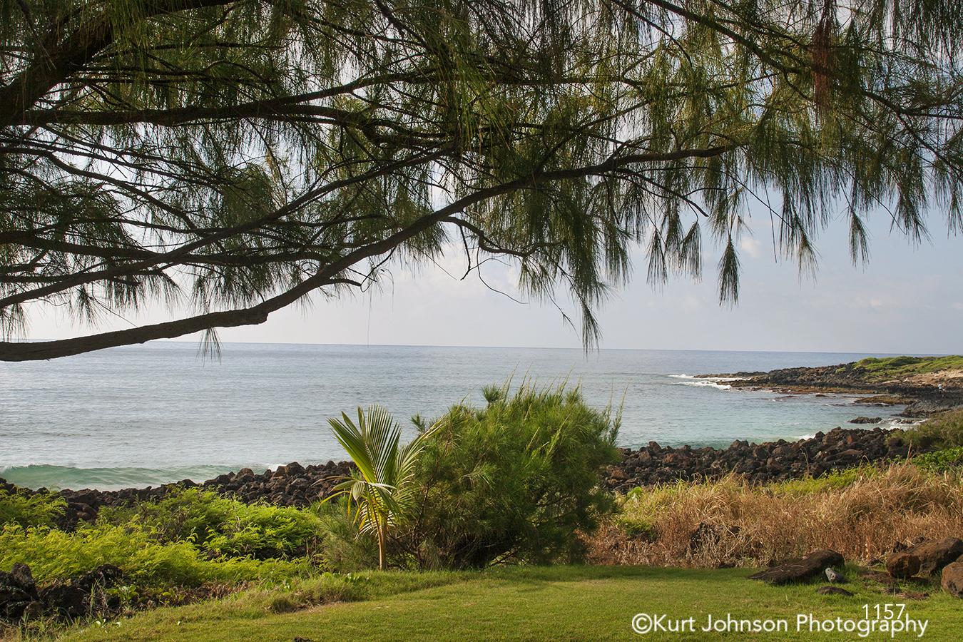 Hawaii Beach water waterscape trees