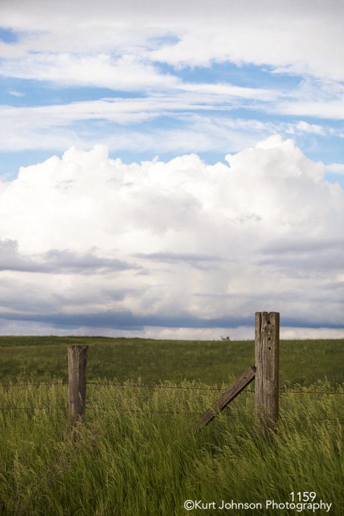 landscape grasses green fence clouds rural