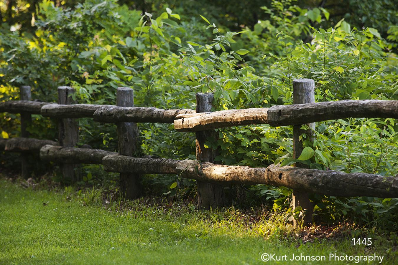 landscape green grasses fence