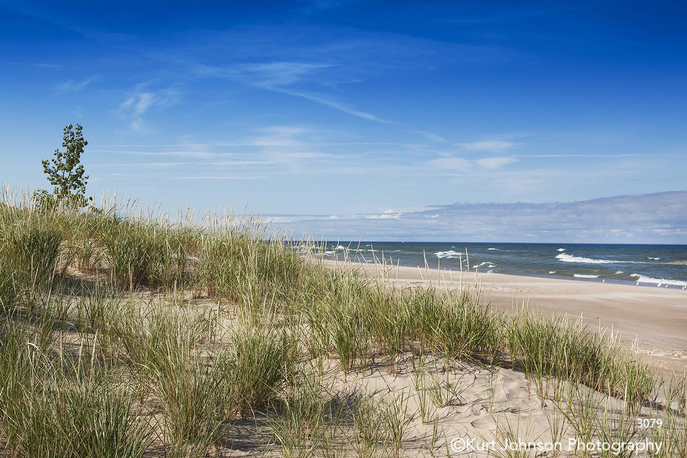 beach sand grasses water waves landscape waterscape