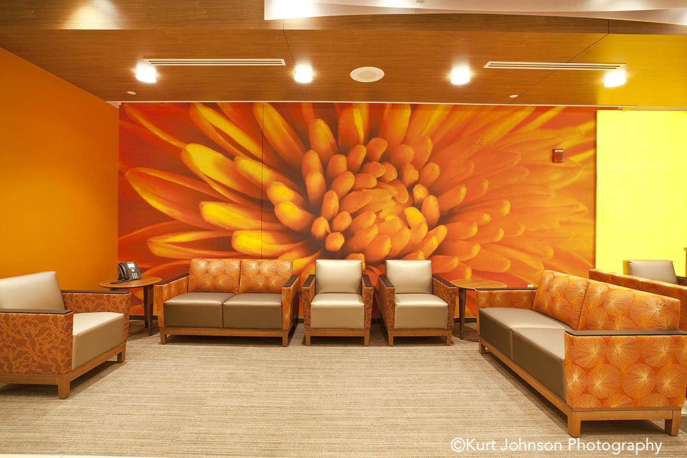 Install-wallcovering-art-The Mother Baby Center at Abbott Northwestern and Children's Minnesota-MN-HDR Minnesota