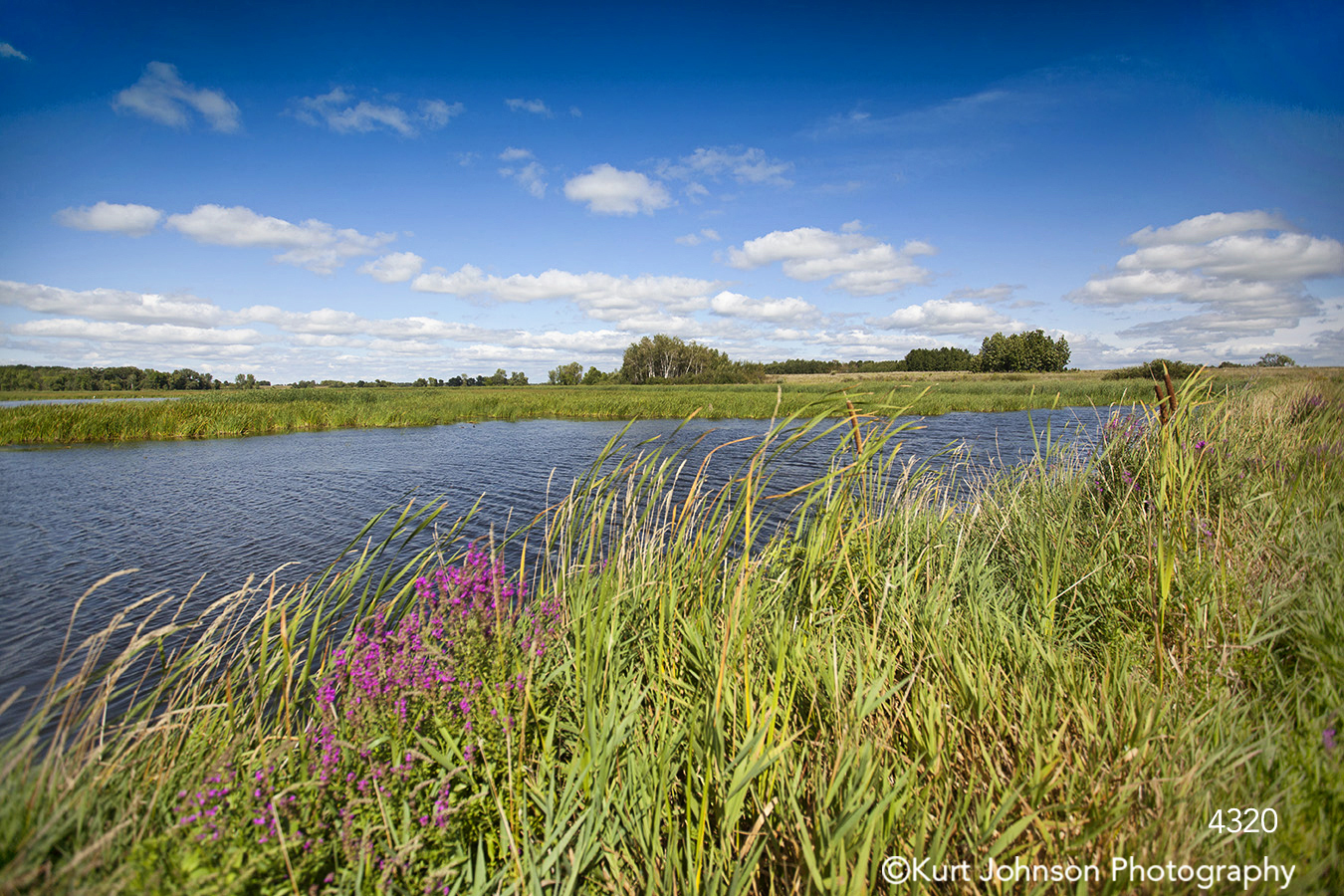 landscape waterscape grasses water clouds flowers midwest