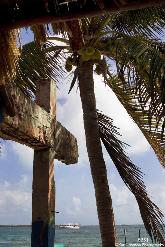 waterscape ocean boat palm tree coconut mexico