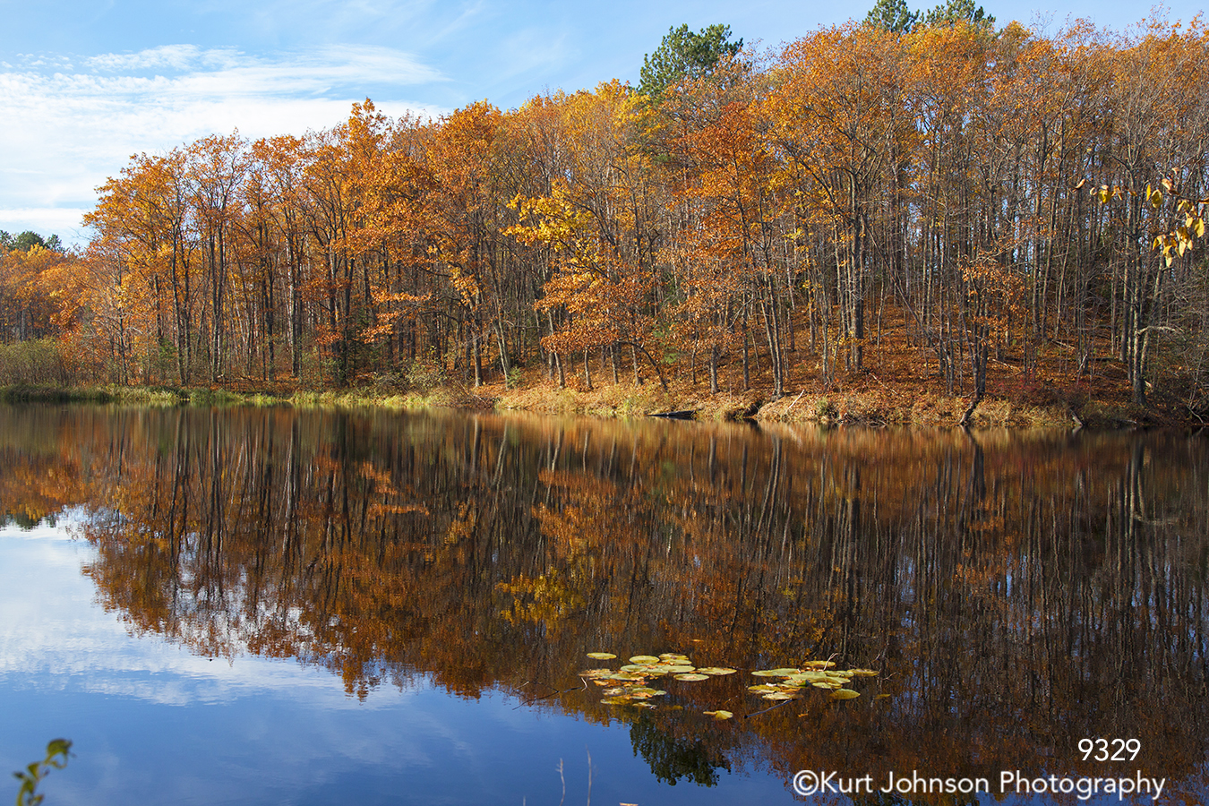 waterscape landscape fall color orange pond water minnesota birch