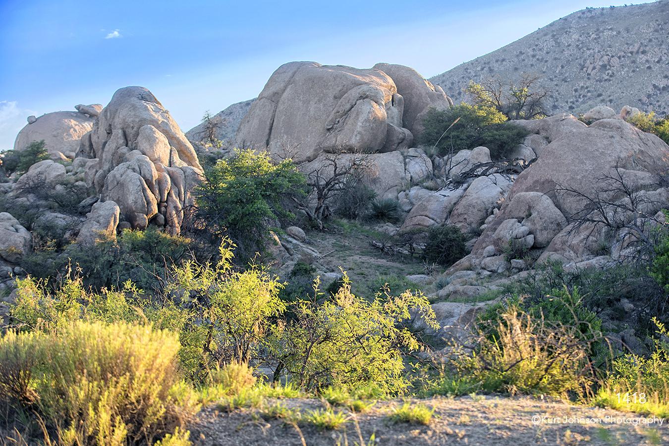 southwest rocks landscape desert grasses