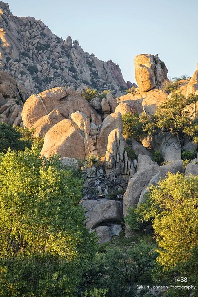 southwest rocks landscape desert grasses trees