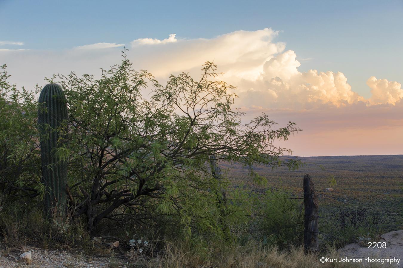 southwest landscape cactus clouds desert mountains trees