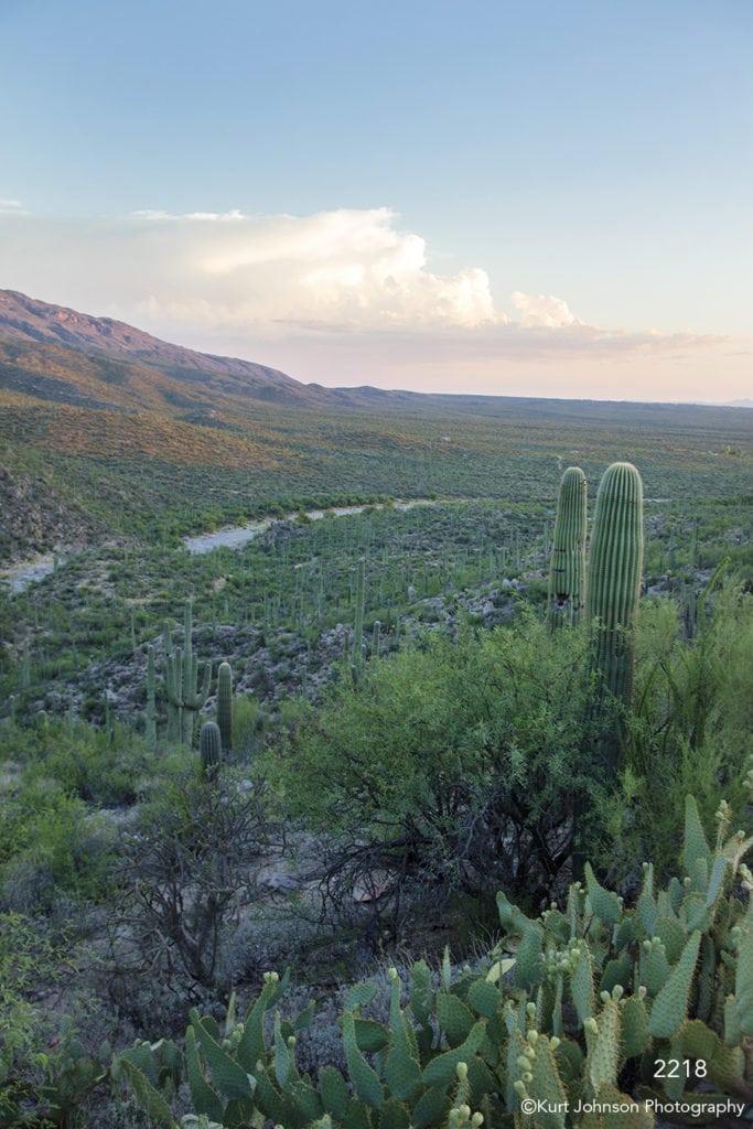 southwest landscape cactus clouds desert mountains river