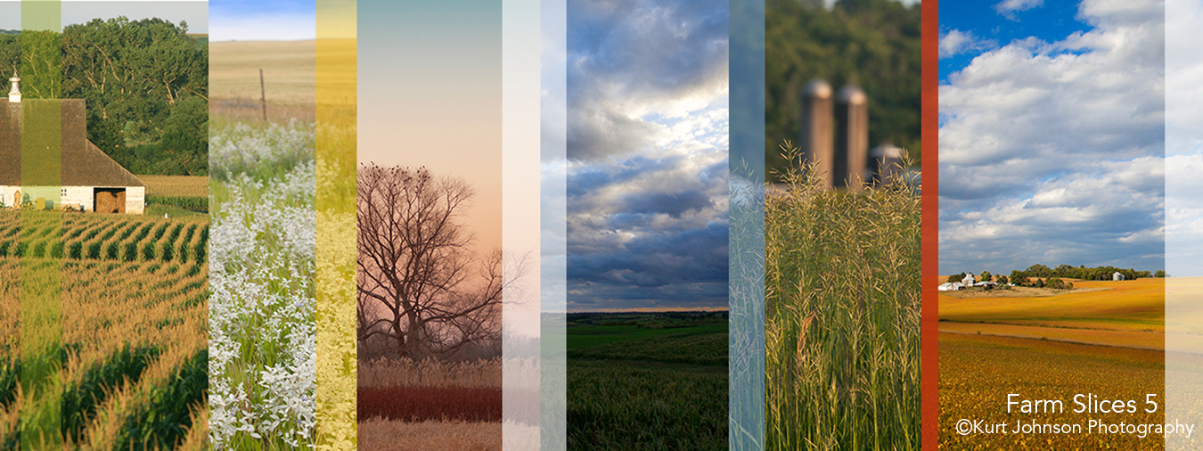 landscape farm slices abstract