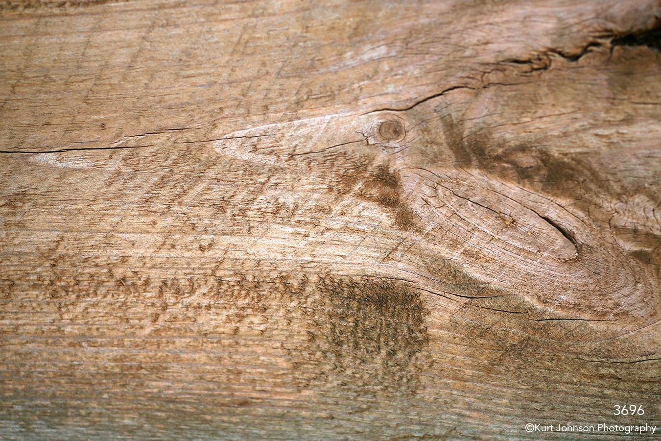 texture bark earthtone wood