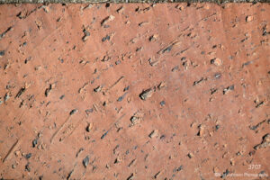 texture brown brick