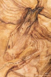 texture wood orange brown earthtone
