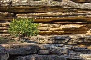 texture rocks earthtones brown