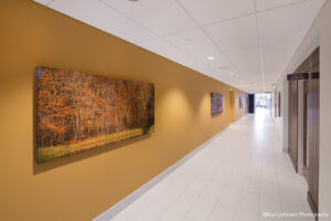 install art installation canvas brooking health system healthcare hospital