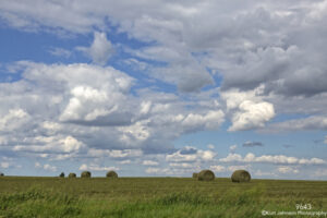 landscape clouds blue sky green grasses hay midwest