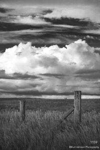 landscape black and white fence