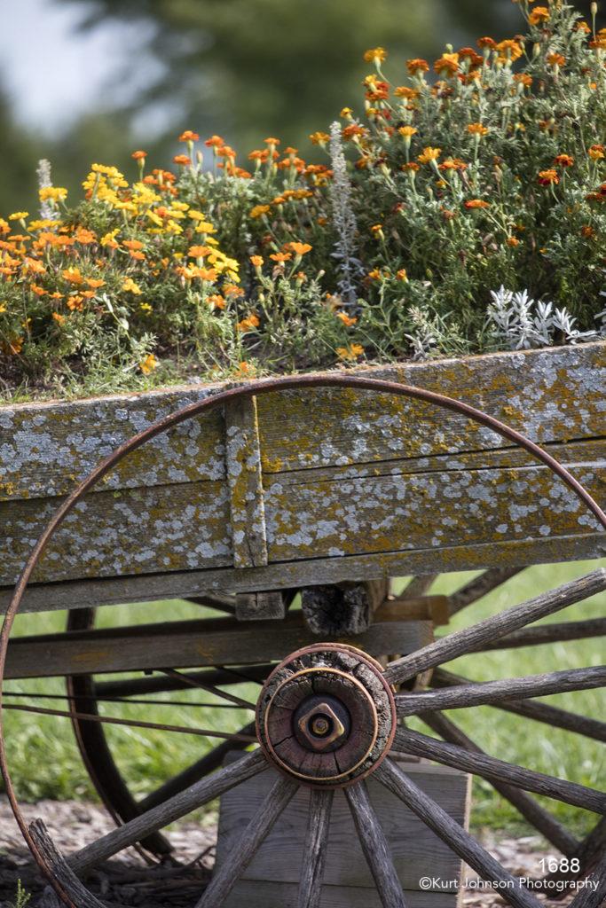 flower flowers garden wagon