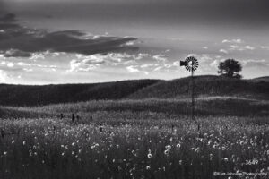 landscape black and white windmill rural