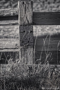landscape black and white fence rural