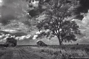 landscape black and white rural barn