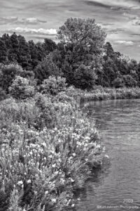 landscape black and white water