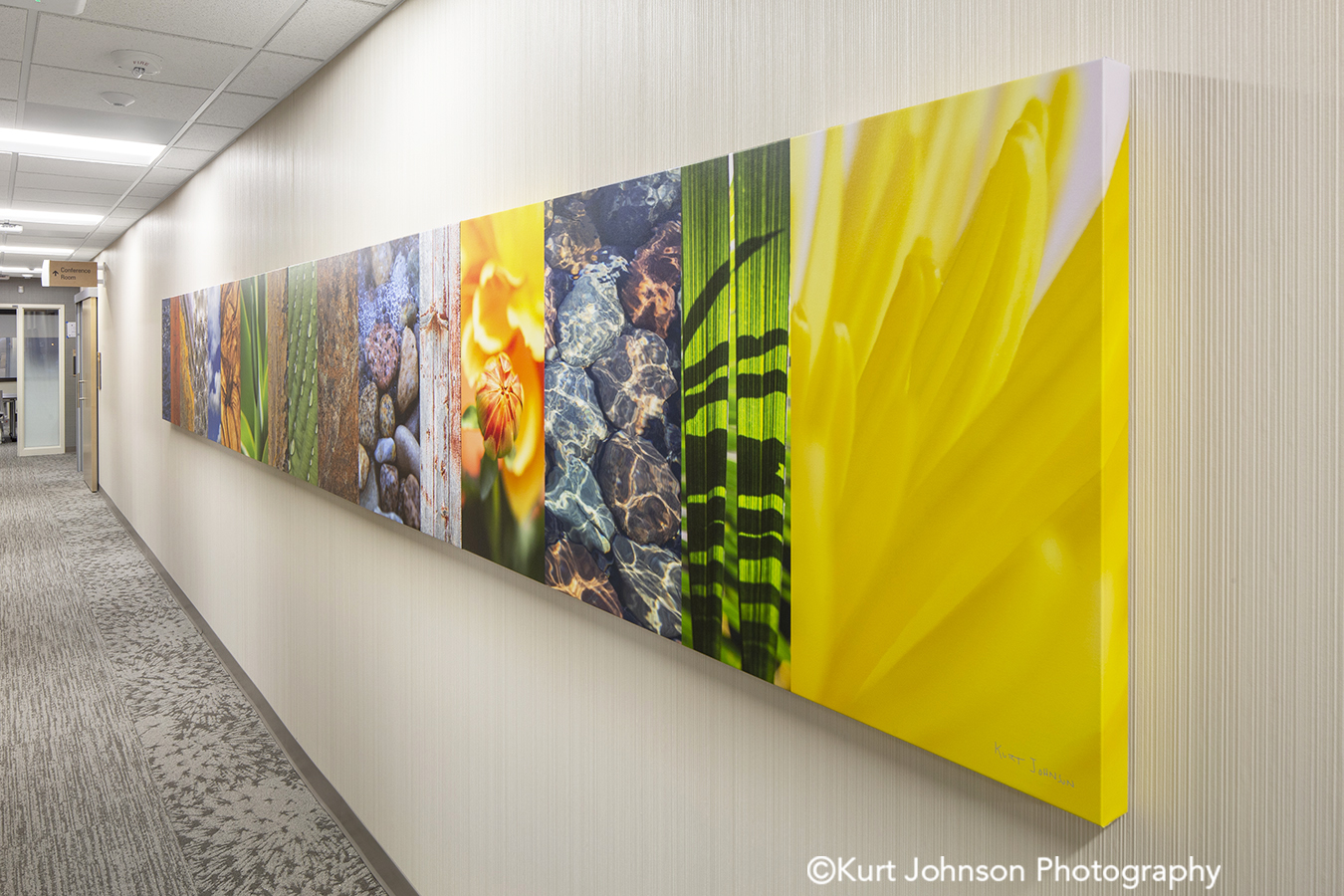 Allina Health art install wrapped canvas color slices flowers grasses healthcare installation design